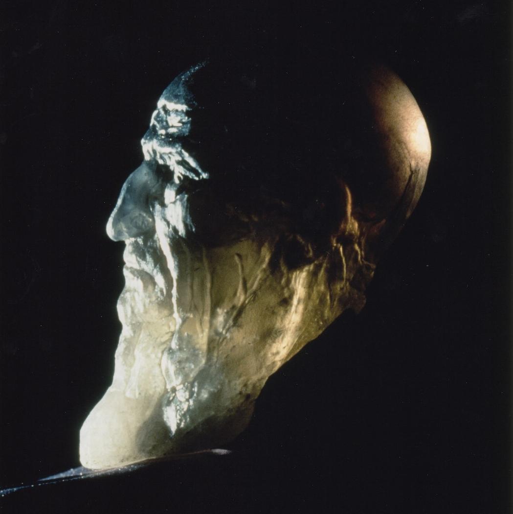 Portrait of Leonardo DaVinci